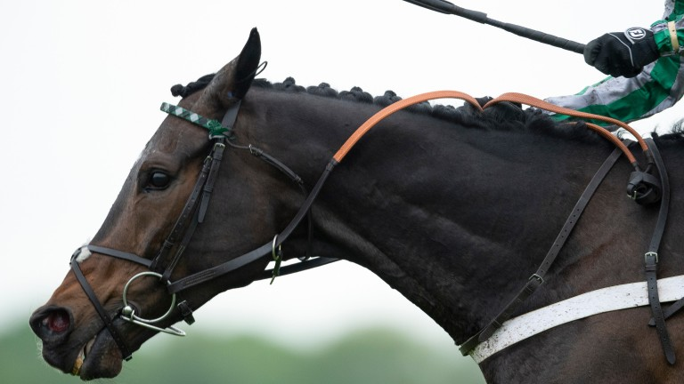 Awesome Altior: Nicky Henderson's star two-mile chaser lands the bet365 Celebration Chase under Nico de Boinville
