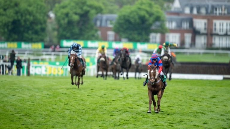 Ready winner: Mark Bradstock's Step Back, the mount of Jamie Moore, leads the bet365 Gold Cup field home up the Sandown hill