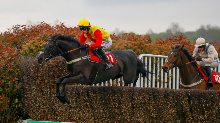 Silverhow wins the Josh Gifford Novices' Handicap Chase to cap a memorable afternoon for a Coral punter