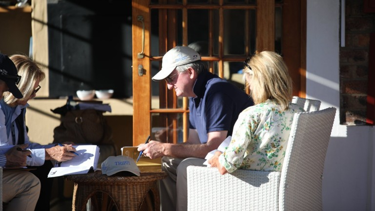 John Ferguson studying the National Yearling Sale catalogue
