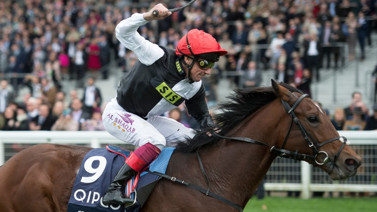 Cracksman: set to eventually become one of the first significant sons of Frankel at stud