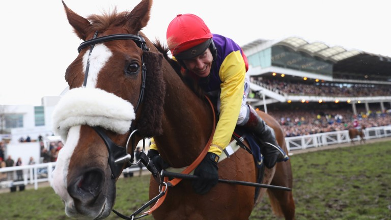 Native River: Gold Cup winner's sire, Indian River, was a Grade 3 chase winner in France