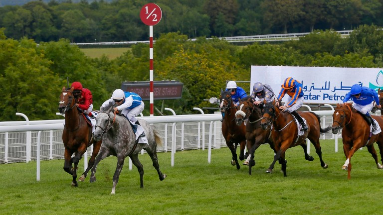 Arod (far side) chases home Solow in the 2015 Sussex Stakes at Goodwood