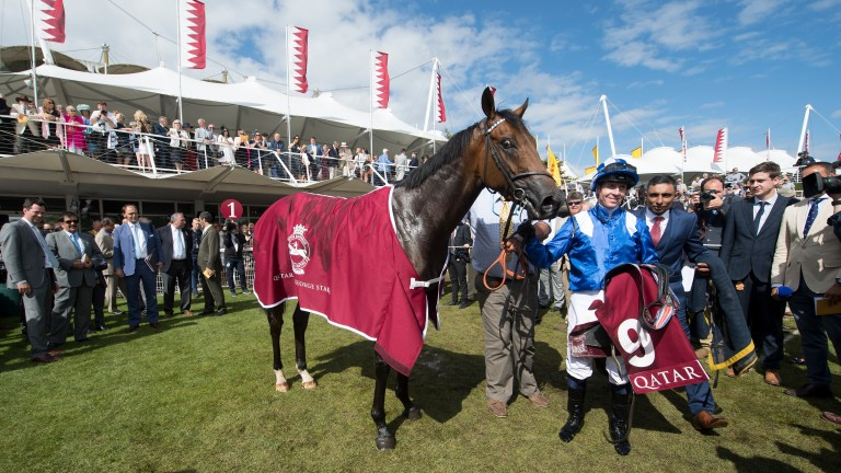Battaash and Jim Crowley soak up the adulation after winning the King George Stakes at Glorious Goodwood last year