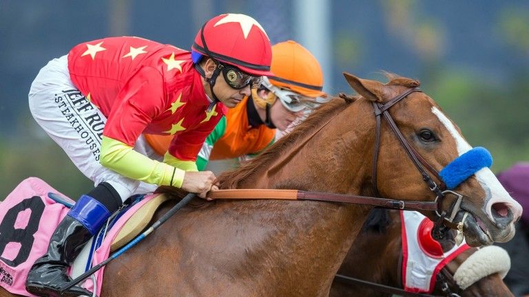 Justify: landed the US Triple Crown for owners including the China Horse Club