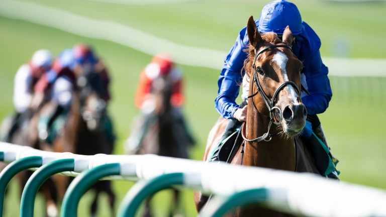 The only one in the picture: Masar (William Buick) winning the Craven Stakes at Newmarket