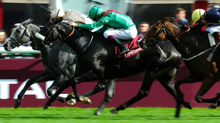Dalkala (green) wins the 2013 Prix de L'Opera at Longchamp