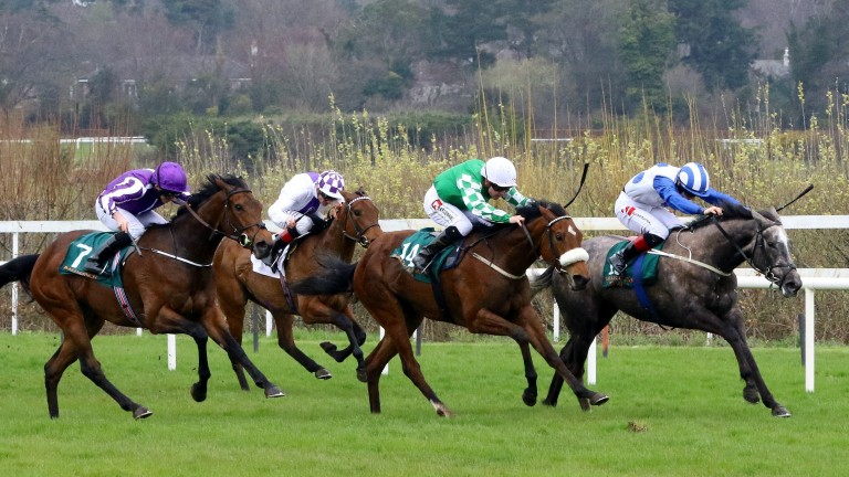 I Can Fly (left) finishing third to Who's Steph (right) at Leopardstown earlier in the season