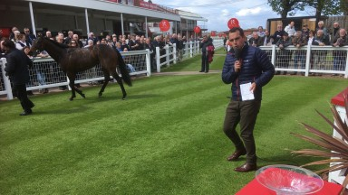 George Stanners puts his back into the job of auctioning seller winner Tarrzan