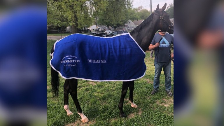 Take Charge Paula: one of two Kentucky Oaks contenders bred and raised by Frankfort Park