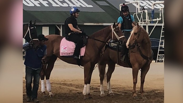 Monomoy Girl: 2-1 favourite is the mount of Florent Geroux in the Kentucky Oaks