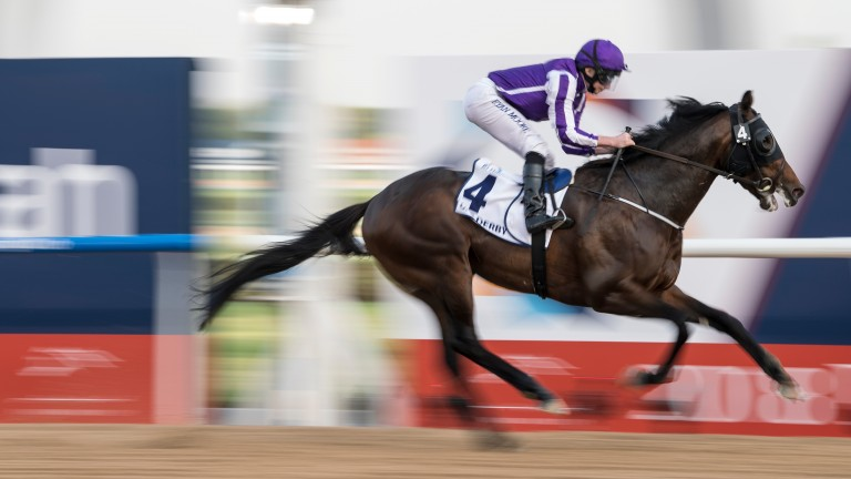 Mendelssohn and Ryan Moore: on the Breeders' Cup Classic trail