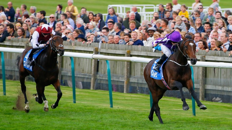 Graffiti Master (left) finishes third to Kew Gardens in the Zetland Stakes