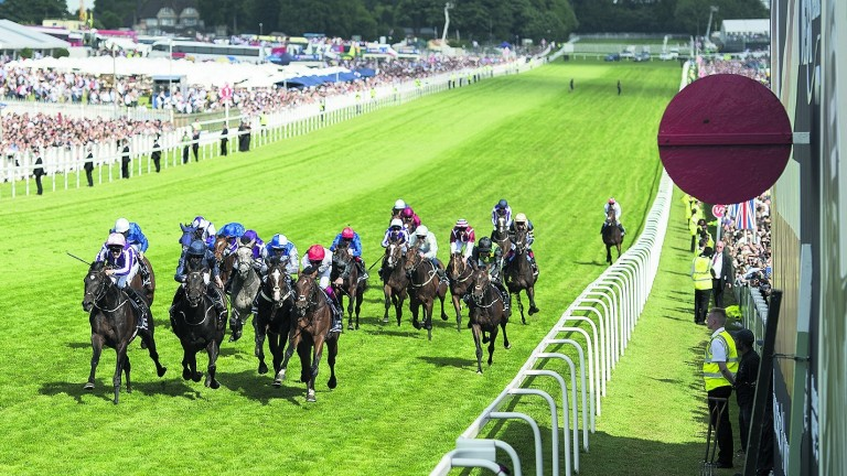Cliffs Of Moher (navy) and Eminent (blaze) finish second and fourth respectively in last year's Investec Derby