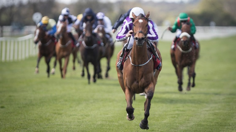 Flattering comes home in splendid isolation at Cork
