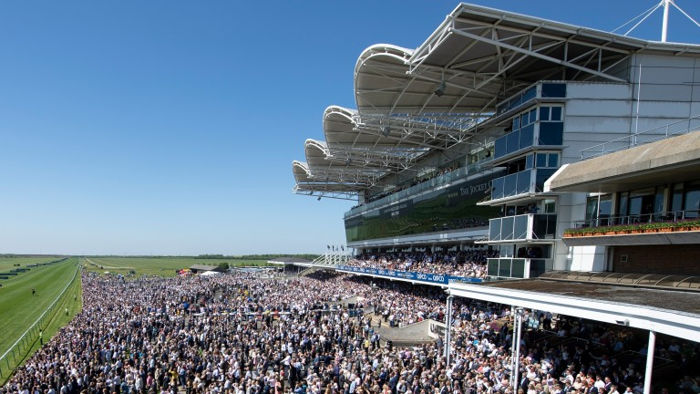 Newmarket: stage a card on Thursday