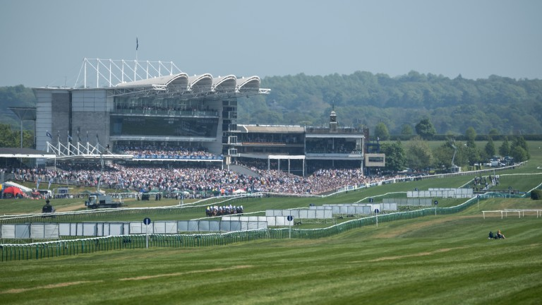 What a view: the crowd gathers on 1,000 Guineas day as the Rowley Mile shimmers in the sun