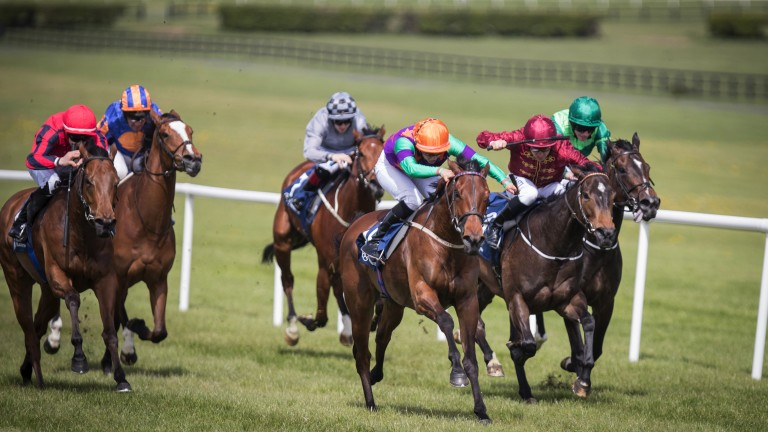 One for the raiders: it's all to play for in the closing stages as the William Jarvis-trained Mrs Gallagher (green sleeves) gallops on strongly to land the Listed Polonia Stakes