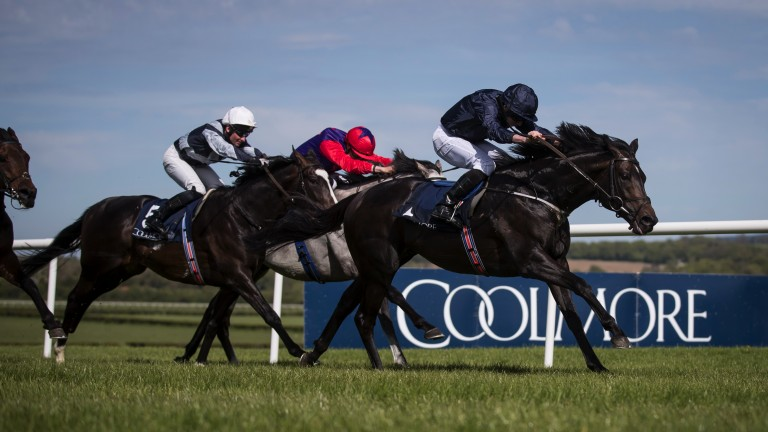 Moher magic: Cliffs Of Moher clears away to justify favouritism in the Group 2 Mooresbridge Stakes