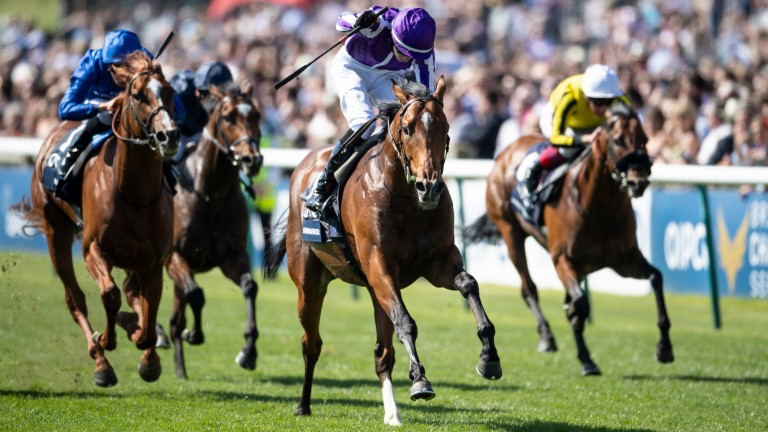 Saxon Warrior: the son of Deep Impact storms to success in the Qipco 2,000 Guineas