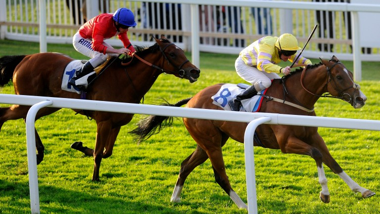Stable favourite Croquembouche (Liam Keniry) winning at Windsor