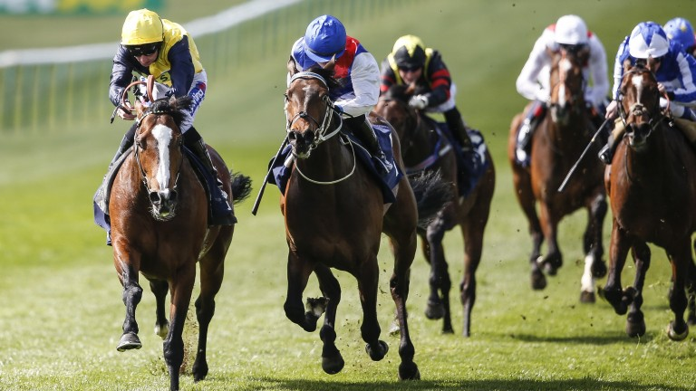 Porth Swtan (left) wins the Alex Scott Maiden Stakes at Newmarket last month