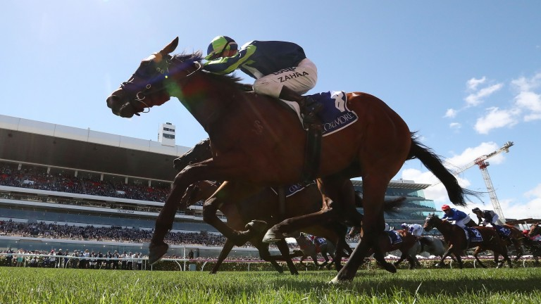 Merchant Navy flashes to victory in the Coolmore Stud Stakes at Flemington last November