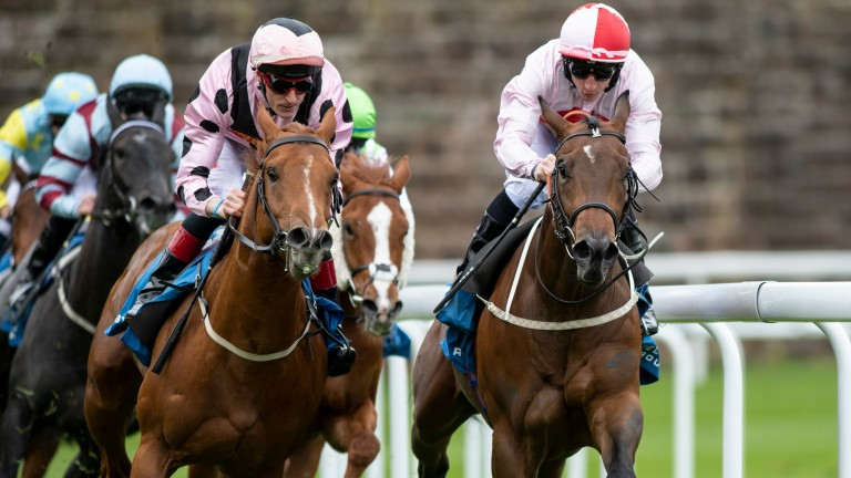No Lippy (right) could step up to six furlongs after this run