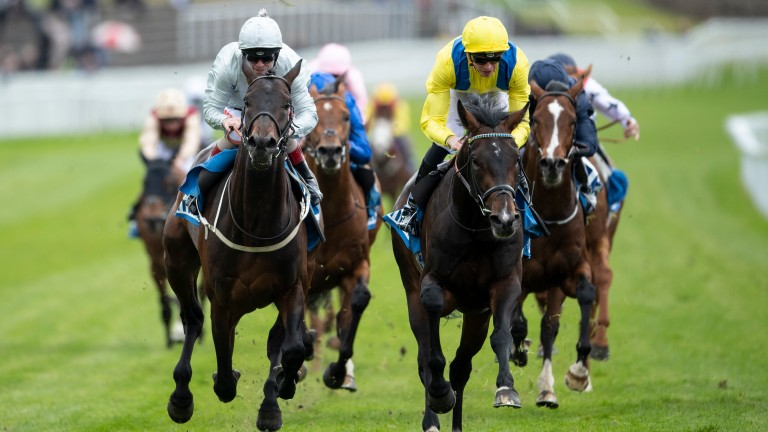 Young Rascal (right) holds off Dee Ex Bee and is now as short as 10-1 to triumph at Epsom