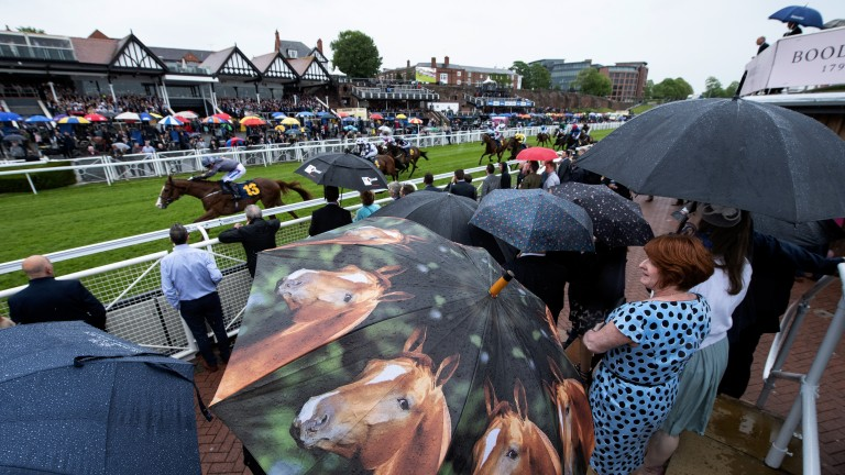 Weather watch: the brollies are up as rain hits the Roodee