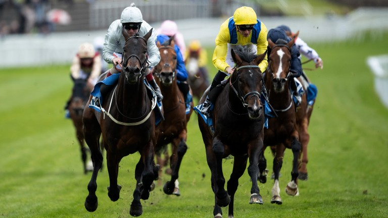 Derby dream: Young Rascal (yellow) books his ticket to Epsom with victory in the Vase