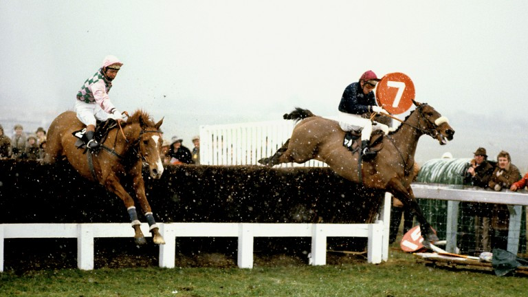 Alverton (left) jumps the last upsides Tied Cottage in the 1979 Gold Cup