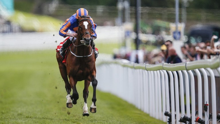 Rostropovich showed his quality in dominating the Homeserve Dee Stakes at Chester last month