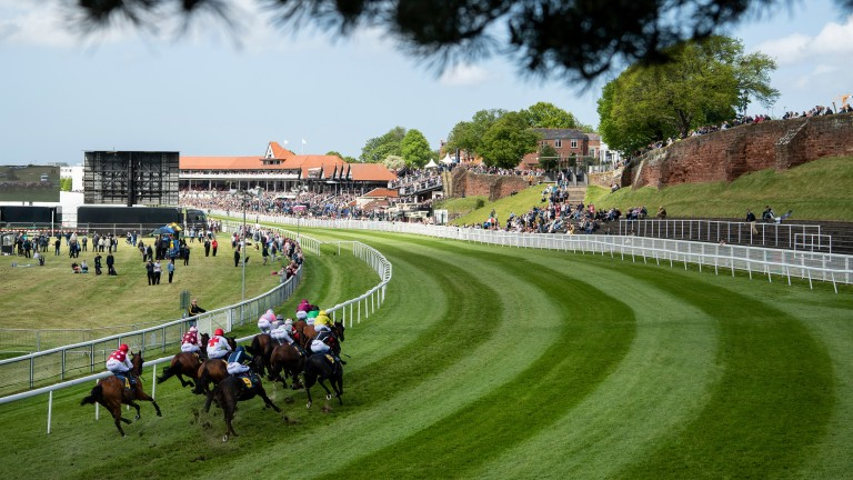 Scenic view: Runners in the opening 5f handicap at Chester