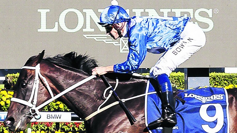 Winx, pictured wining the Queen Elizabeth Stakes, heads the Longines World's Best Racehorse Rankings