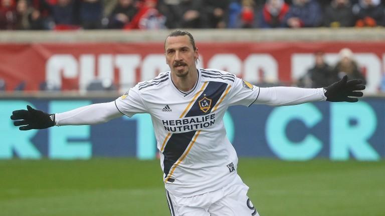 LA Galaxy striker Zlatan Ibrahimovic