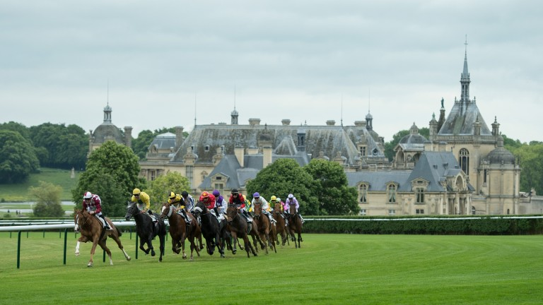 Chantilly: plays host to the Prix du Jockey Club on Sunday