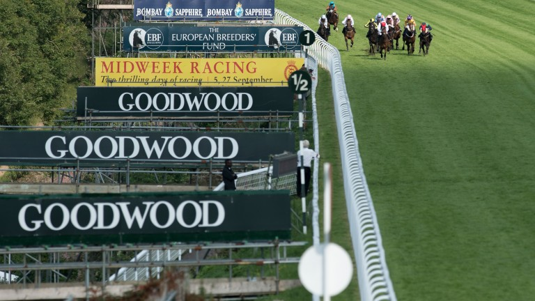 Goodwood: scenes at track's seasonal opener were shocking
