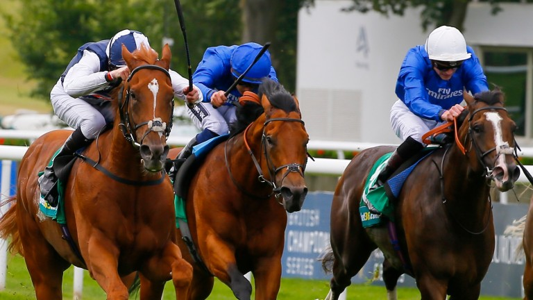 Silent Attack (right) gives Bin Suroor a live contender for the Victoria Cup