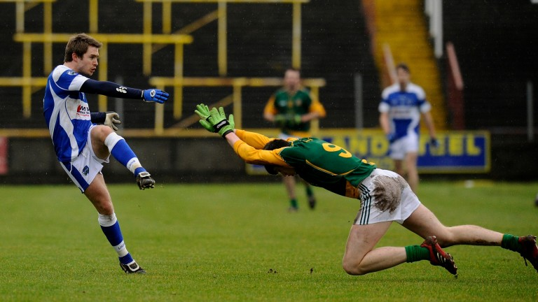 Laois take on Wexford on Saturday
