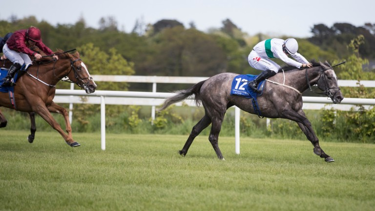 Who's Steph: pulls clear to win the Derrinstown Stud 1,000 Guineas Trial Stakes at Leopardstown