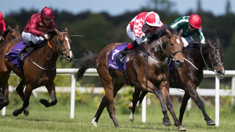 Zihba (centre) and Chris Hayes land the Amethyst Stakes at Leopardstown