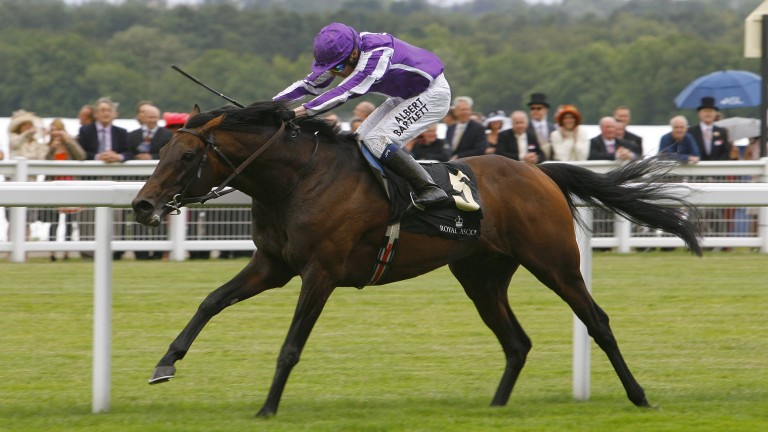 """Gold Cup winner Fame And Glory """"a major loss to Irish breeders"""" says Neil Walsh"""