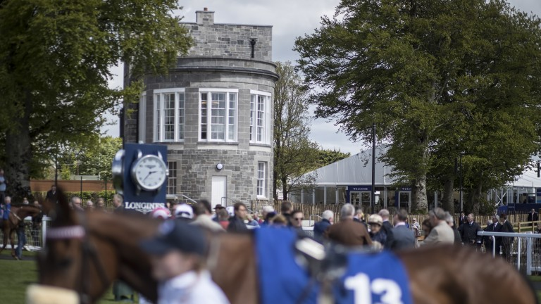 The Queen's room is the backdrop as the runners parade at the Curragh