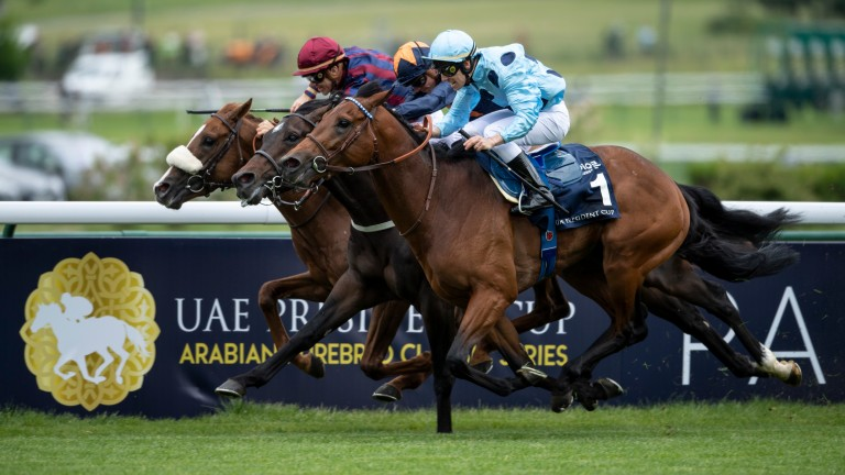 Olmedo grinds out victory over Hey Gaman in this year's Poule d'Essai des Poulains