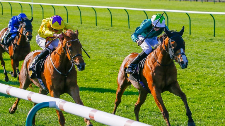 Ceilidhs Dream (right) beats Sea Of Class at Newmarket