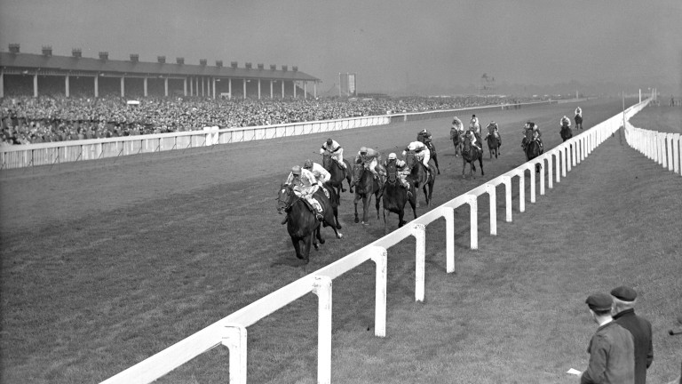 The finish of the St. Leger Stakes won by Mr. J. McShain's 'Ballymoss' (T. P. burns up), from 'Court Harwell' (A. Breasley) and 'Brioche' (E. Hide up).