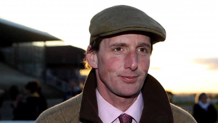 Horse racing: Eddie Hales, who has revealed he is leaving the training ranks to work in Mikey Ryan's restaurant in Cashel