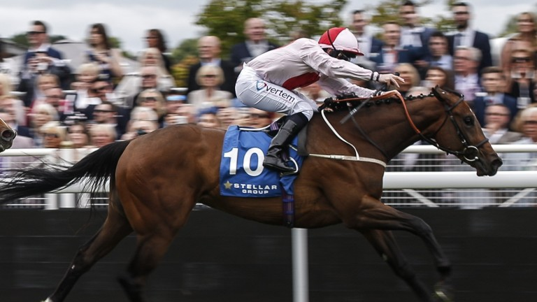No Lippy brings strong form to York for the Marygate Fillies' Stakes