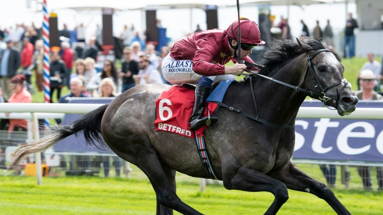 Roaring Lion will take on Saxon Warrior for a third time in the Investec Derby, John Gosden announced on Tuesday